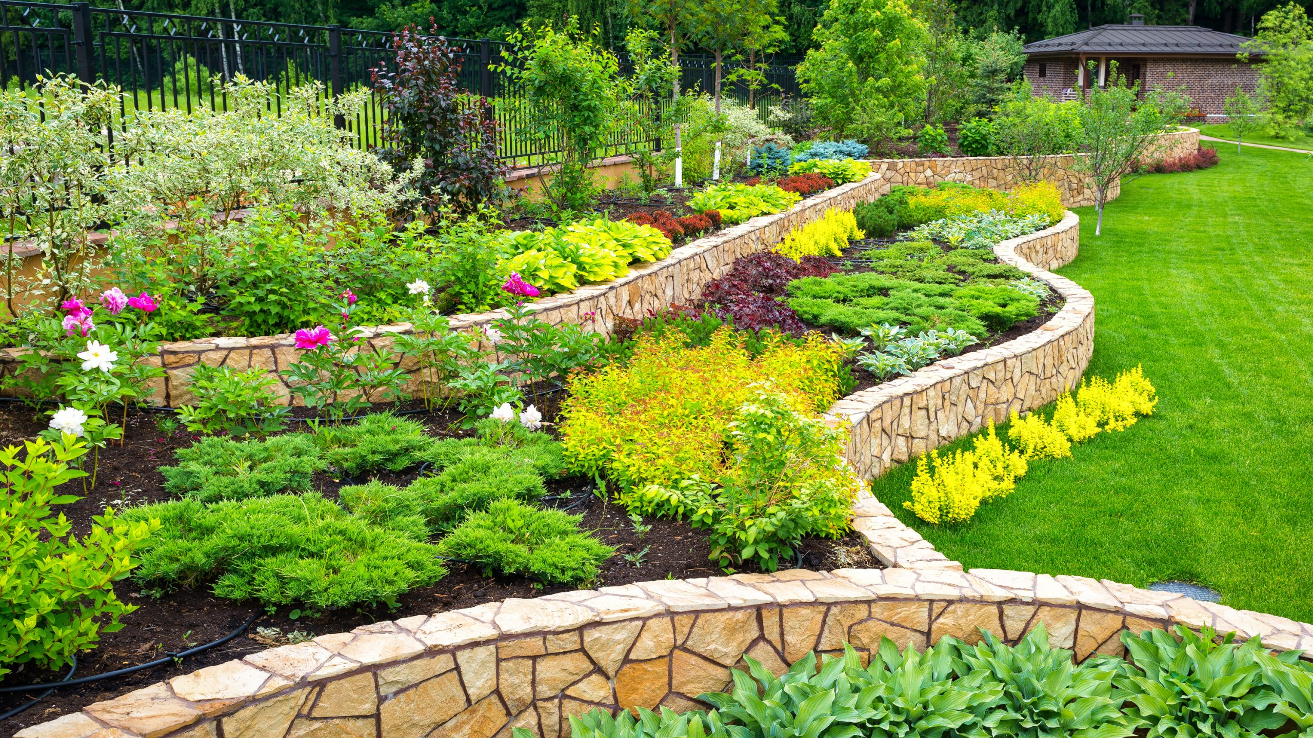 backyard with abundance of flowers and plants in well landscaped bedding